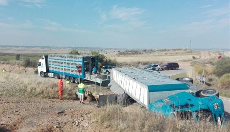 vuelca, camión, transportaba, cerdos, Soria,