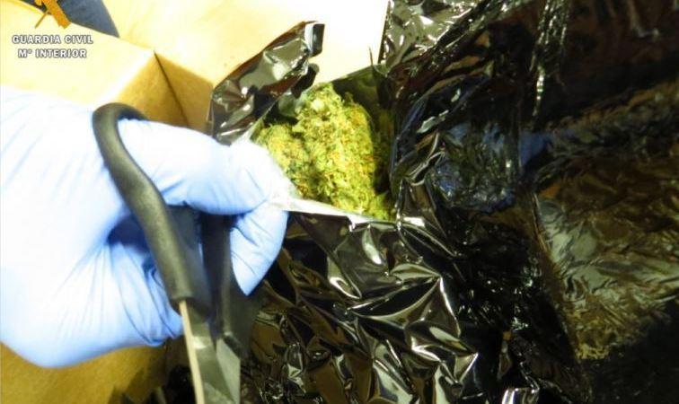detenido, traficar, marihuana, empresa, paquetería, trabajaba,