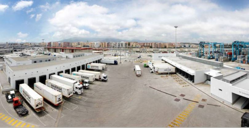 importadores, pescado, plantean, paralizar, actividad, demoras, PIF, Algeciras,