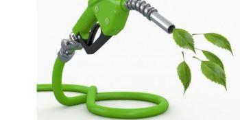 11 empresas se unen para acelerar la transición energética del transporte y la logística