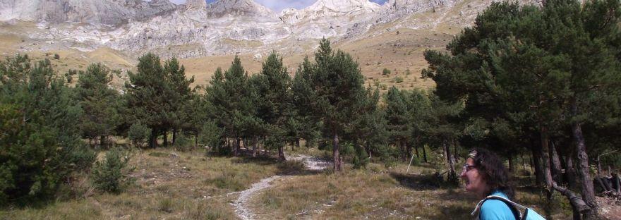 andiamo sul Monte Mongioie?