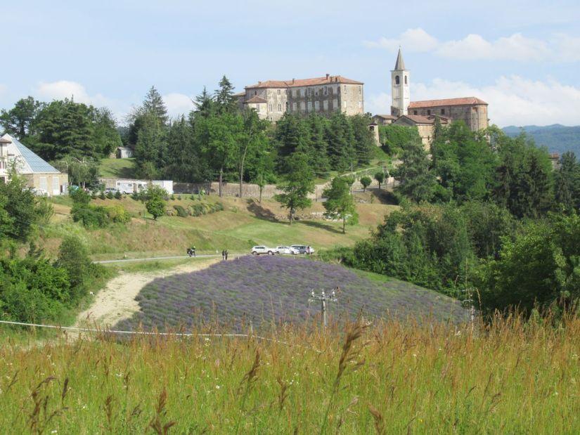 Sale San Giovanni e un campo di lavanda