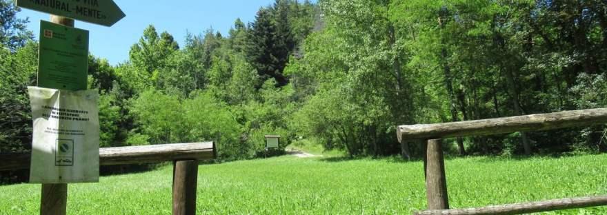 Arboreto Prandi: l'ingresso