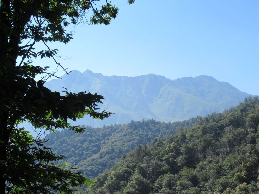 Bisalta Trail