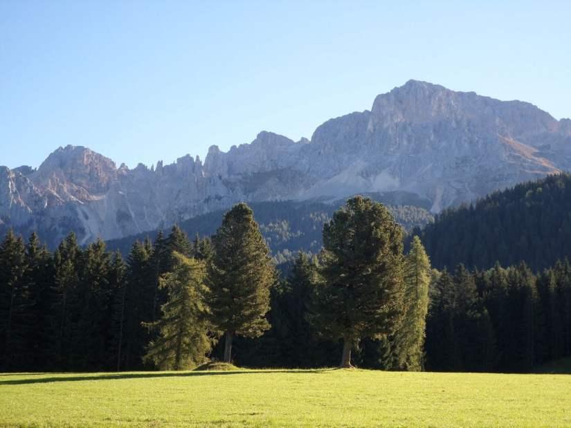 panorama sul Latemar da Obereggen