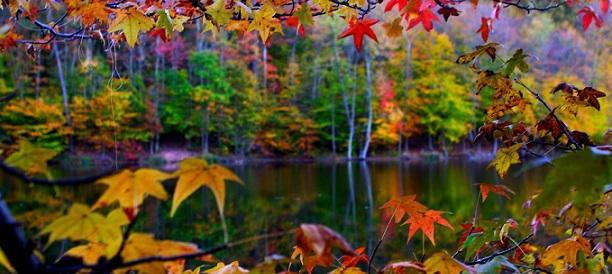 autumn-lake_p_612x274
