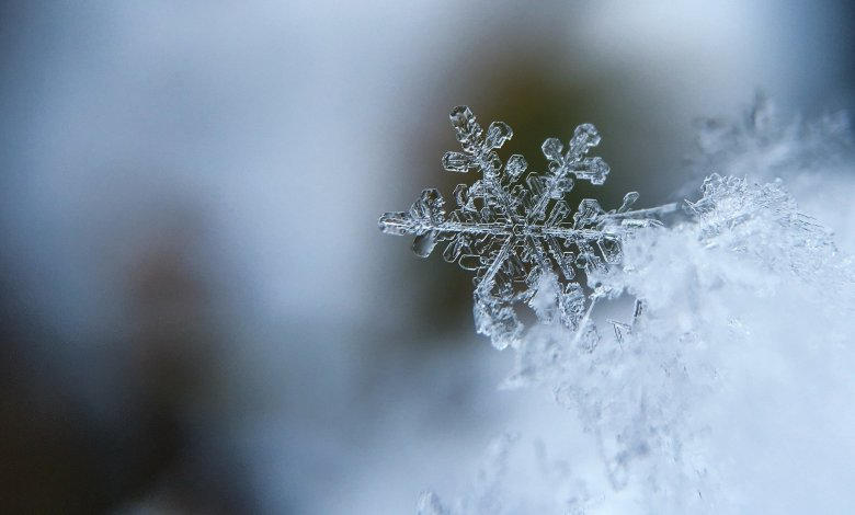 Alerta Climática •Lluvia dará paso a la nieve y hielo en St.Louis el Sábado