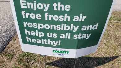 Photo of Ejecutivo Sam Page abre 30 parques en el Condado; Primer paso a la reapertura