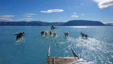 Photo of Imagem mostra degelo recorde na Gronelândia