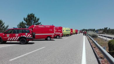 Photo of Acidente fere sete atletas na A1 em Alcanena