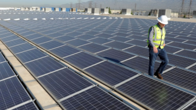 Photo of Sporting vai instalar 600 painéis solares em Alcochete