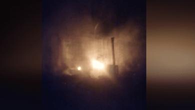 Photo of Cenário de horror em canil de Santo Tirso