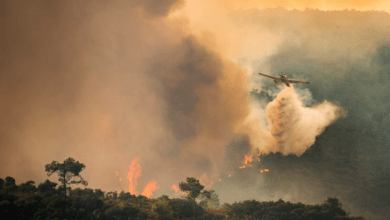 Photo of IPMA coloca oito distritos sob aviso de risco máximo para incêndios