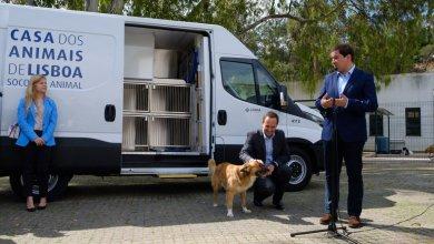 Photo of Câmara de Lisboa investe mais de 1 milhão em casas para animais