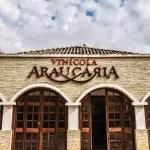 Vinícola Araucária associa espaço e tecnologia na elaboração de vinhos finos