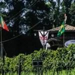 Quinta do Olivardo realiza 5° Pisa da Uva em São Roque (SP)