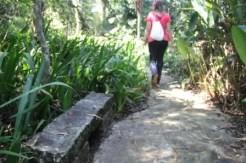 A trilha tem lugares para contemplação e relaxamento
