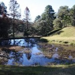 Secretaria de Meio Ambiente abre edital para concessão de Parque Estadual Campos do Jordão
