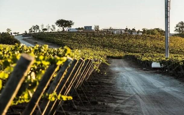 Chile reúne vinho premiado e o melhor da culinária local em final de ano