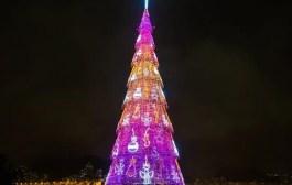 Inauguração da Árvore do Rio Light será neste sábado e promete emoções