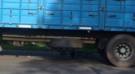 Accidente camión y bicicleta (4)