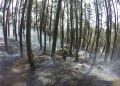 Desconocen qué inició el incendio. El  jueves se reportaba el inició de otro en el dique de Agua Fría.