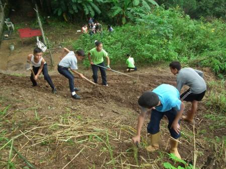 Los jóvenes en varias materias aprenden a sembrar, conocimiento muy útil en la situación actual del país