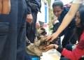 Los estudiantes disfrutaron de una exhibición canina en vivo