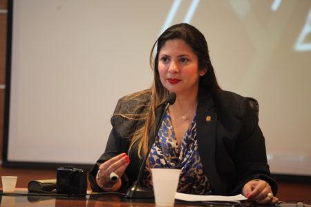 Nora Bracho: Está listo el Plan País para la recuperación de los servicios públicos