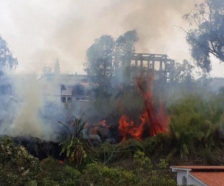 Incendios forestales en Altos Mirandinos.