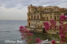palazzo+donnanna+fiori