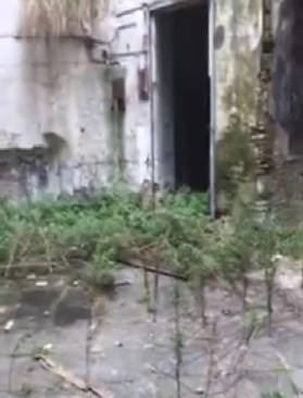 degrado interno di palazzo Penne, dal video di Pino de Stasio