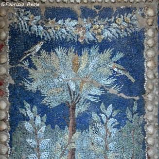 mosaico-romano-ninfelo-villa-massa-lubrense-villa-fondi-piano-di-sorrento-particolare