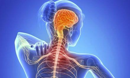 ¿Qué es Esclerosis Lateral Amiotrófica?