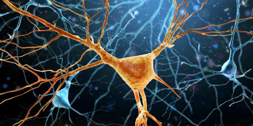 Conozca más de la Esclerosis Lateral Amiotrófica
