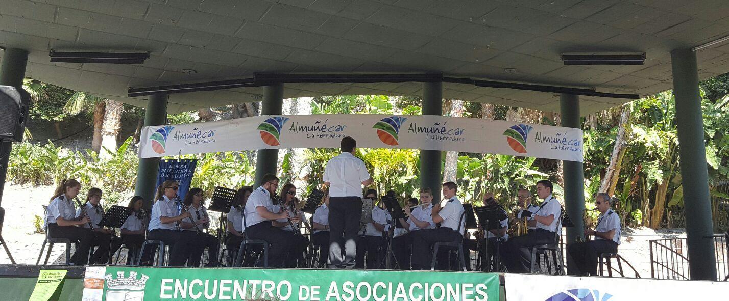 BANDA MUNICIPAL  DE MUSICA ALMUÑECAR 16