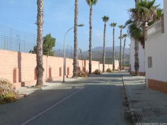 limpieaza-palmeras-urbanizacion-rio-verde-la-paloma-16-2
