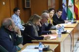 GRUPOS OPOSICION IU PSOE Y PA EN PLENO HOY 16