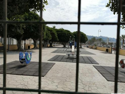 LIMPIEZA PALMERAS Y PARQUES LA HERRADURA 20