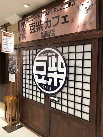 豆柴カフェ福岡パルコに行ってきた感想