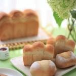 「パンドミ」と「プチパン」、いちご酵母のパンが焼けました。