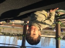 Image of Collin smiling and looking up while on a playground structure.