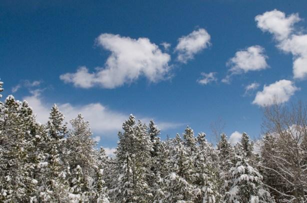 Blue skies and Colorado snow