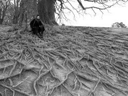 Sitting beneath ancient trees at Avebury, Womb of the Earth