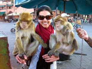 53-marrakech-monkey