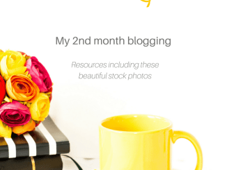June blogging income report