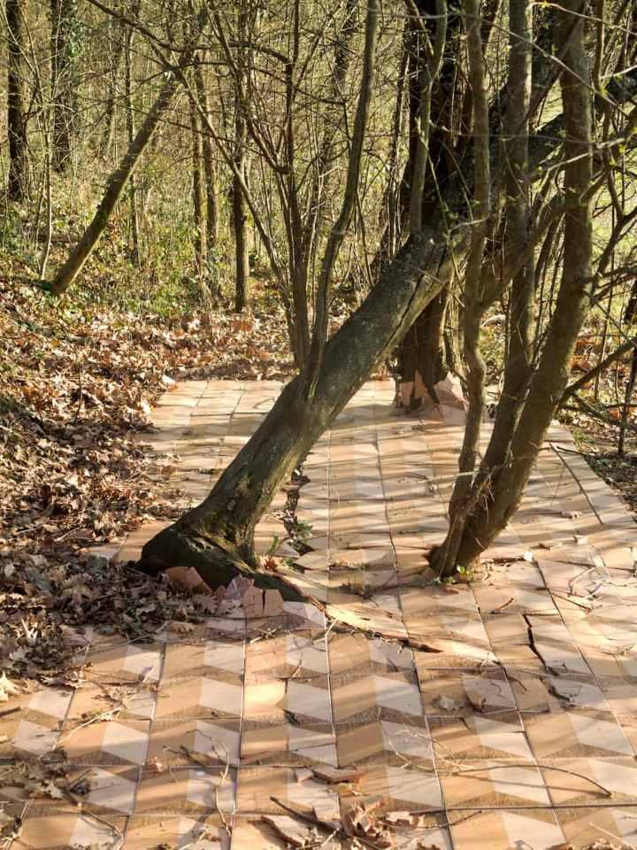 locatelli-12-0011_Graziano-Locatelli-Demiurgo_s-house-landscape-2017-18-1