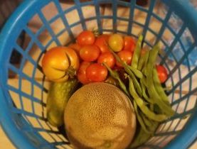 Produce - Making it a Summer to Remember