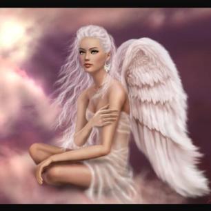 A Stylish Afternoon Tea - Deirdre angel