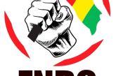 Violation des Droits Humains: Le FNDC salue l'invitation du conseil de sécurité des Nations Unies